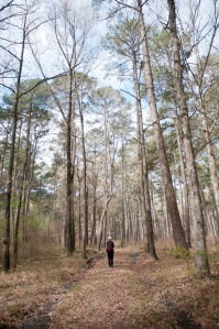 20150329_Bienville National Forest 02.1